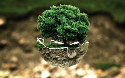 Retorno al Ser que Somos | Cómo daña la contaminación a nuestro cuerpo