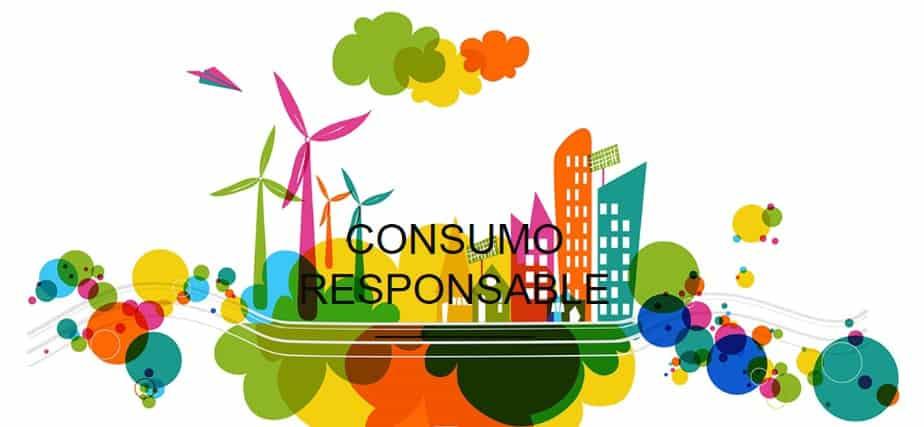 Retorno al SER que Somos | El Consumo Responsable, por Fundación Vivo Sano