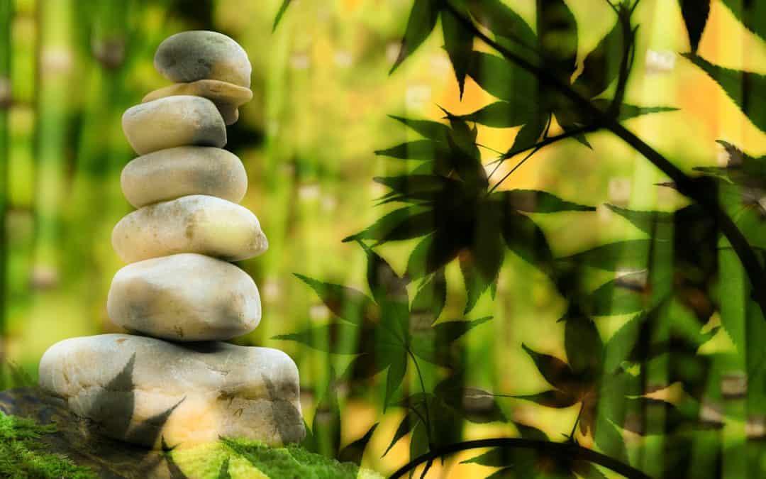 Por qué y para qué una gestión de la Espiritualidad