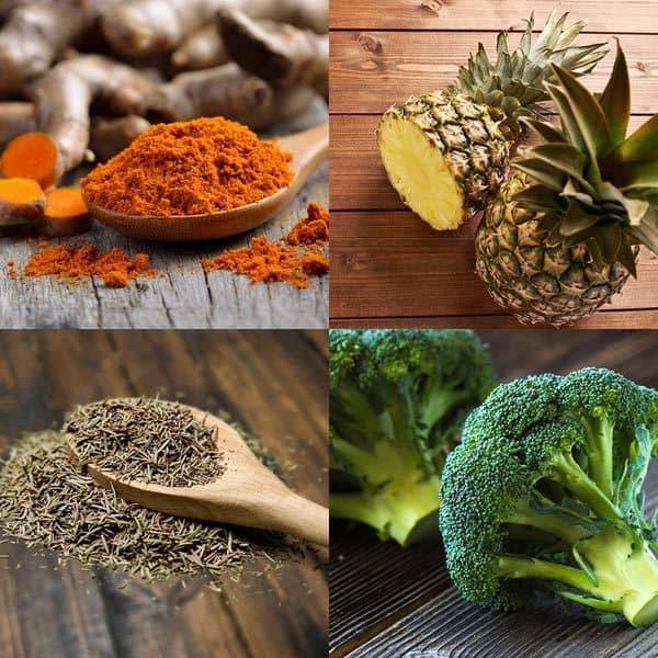 Ciclo Fundamentos científicos de la dieta anticancer – Entrega III
