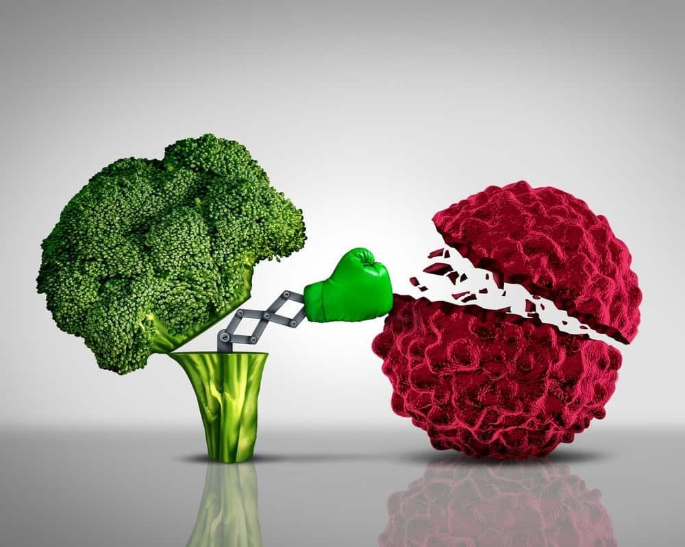 Ciclo Fundamentos científicos de la dieta anticancer – Entrega IV