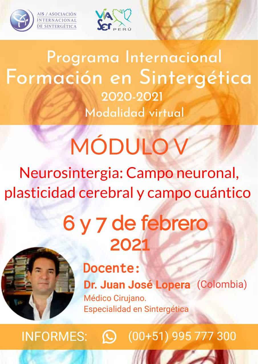 Formación en Sintergética 2020-2021 Lima (Perú) – Módulo V – ONLINE