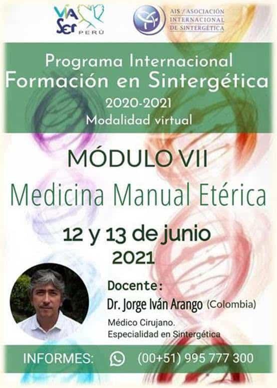 Formación en Sintergética 2020-2021 Lima (Perú) – Módulo VII – ONLINE