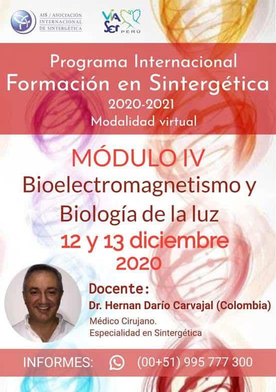 Formación en Sintergética 2020-2021 Lima (Perú) – Módulo IV – ONLINE