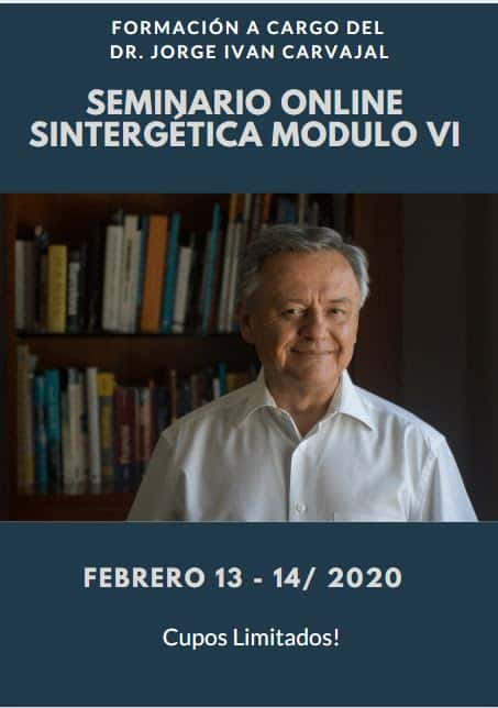 Formación Sintergética Medellín (Colombia) Módulo VI – ONLINE