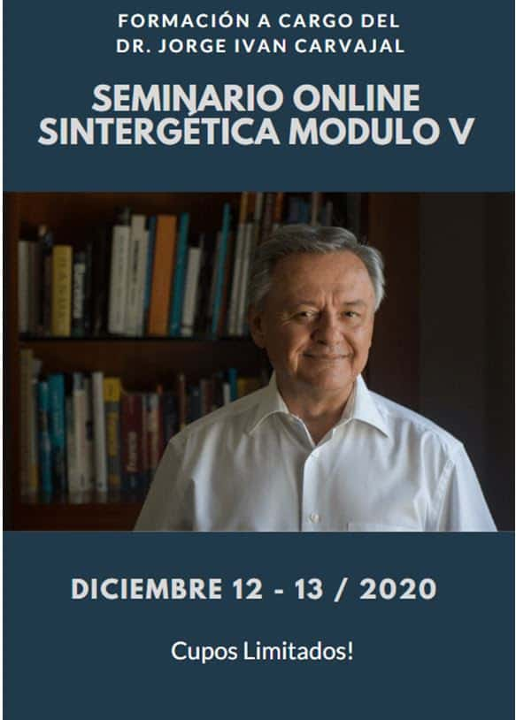 Formación Sintergética Medellín (Colombia) Módulo V – ONLINE