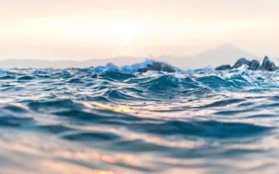 El agua como camino, relación y salud