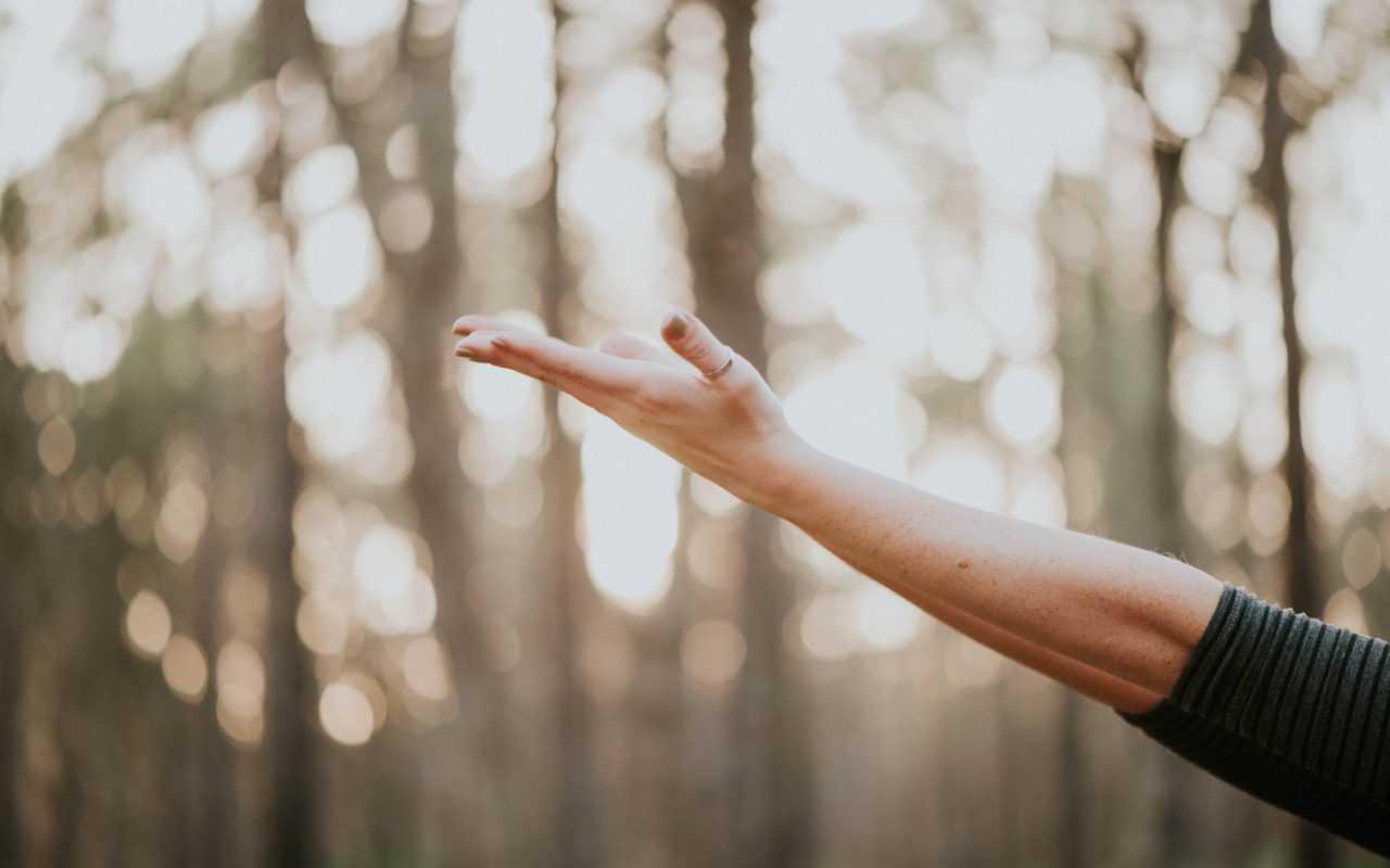 Autogestión en salud: el aporte de la terapia de manos a la humanidad
