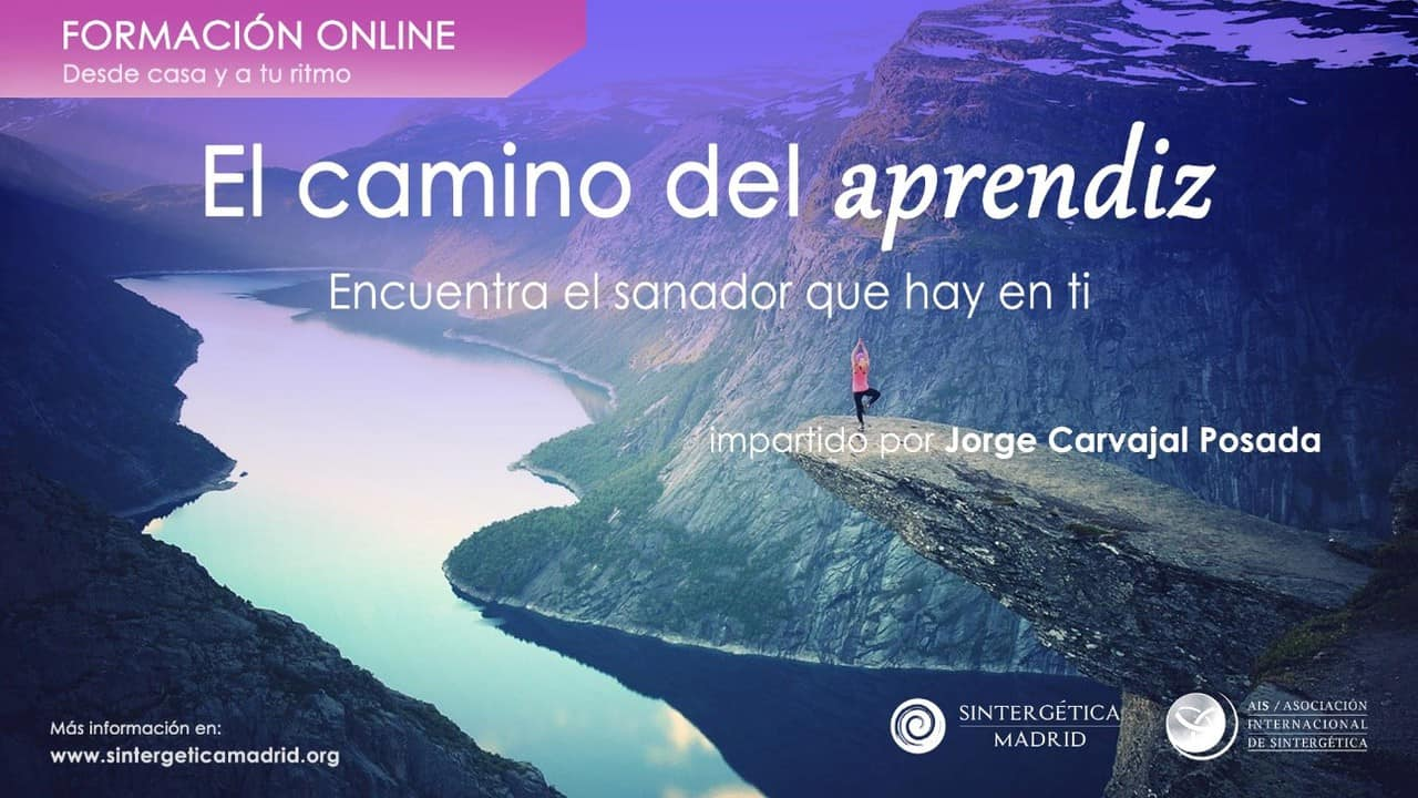 Curso Online El Camino del Aprendiz