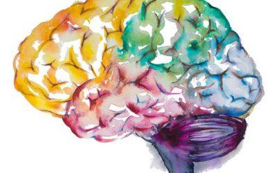 Equilibra y mueve tu cerebro