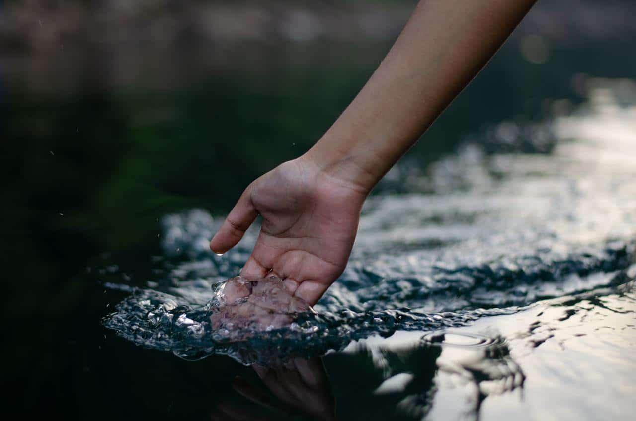 El Agua: el elemento de la nutrición fundamental para la vida